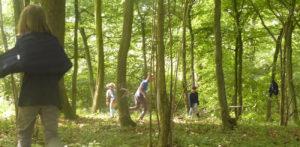 Wald für Ein- & Durchsteiger @ Alleine in der Natur