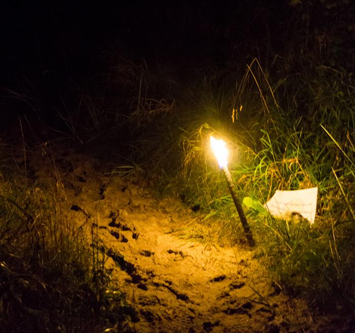 Eine Fackel leuchtet am nächtlichen Rand eines Pfades
