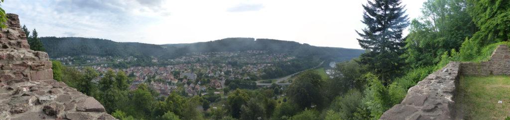 Blick auf Neckargerach von der Minneburg am nächsten Morgen