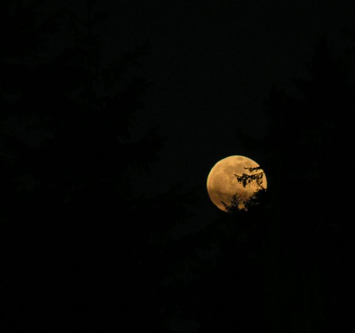 Fotos-Impressionen-Stimmung-09.jpg